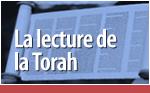 The Torah Reading