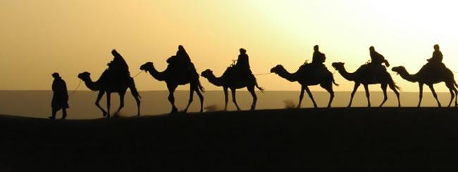 Torah Portion: Lej Lejá