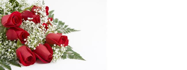 Un Ramo de Rosas
