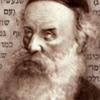 Rabi Shneor Zalman - O