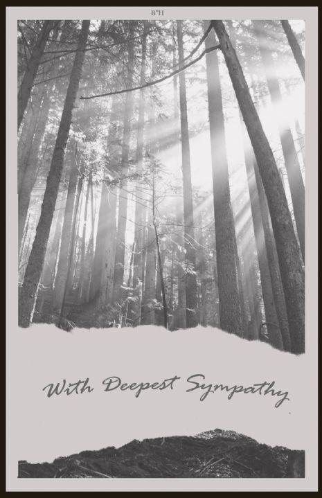 Sympathy #1 copy.jpg