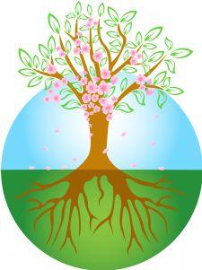 spring tree image.jpg