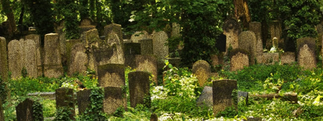 Torah Classes: The Jewish Approach to Death