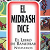 El Midrash