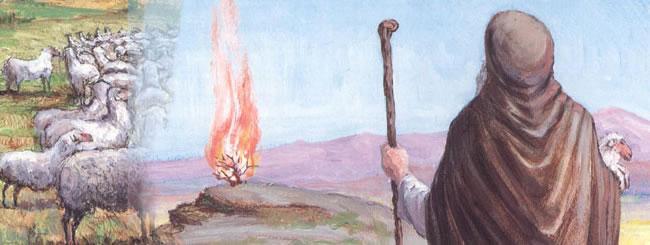 משה רבנו: מתיבת עץ קטנה למנהיג הדגול ביותר בהיסטוריה