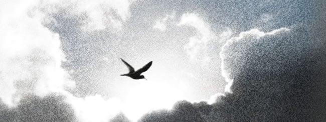 Comentaristas de la Parashá: ¿Qué pasa con los pecados después de morir?