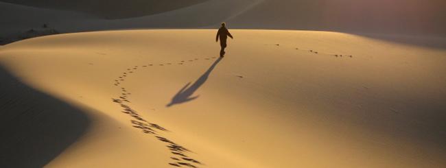 Comentaristas de la Parashá: Transformando nuestro desierto