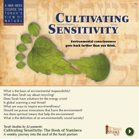 cultivating sensitivity.jpg