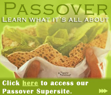 Passover Site Banner (225 px)