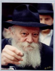 the Rebbe.jpg