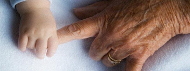 Parshah Musings: The Bones of Your Ancestors