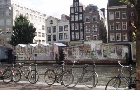 Bikes parked next to one of Amsterdam's famous canals.