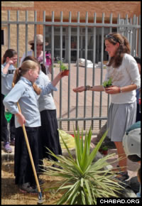 A UVM student, right, helps Ohr Menachem girls decide on plants for their school's garden.