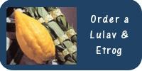 Order Lulav.jpg