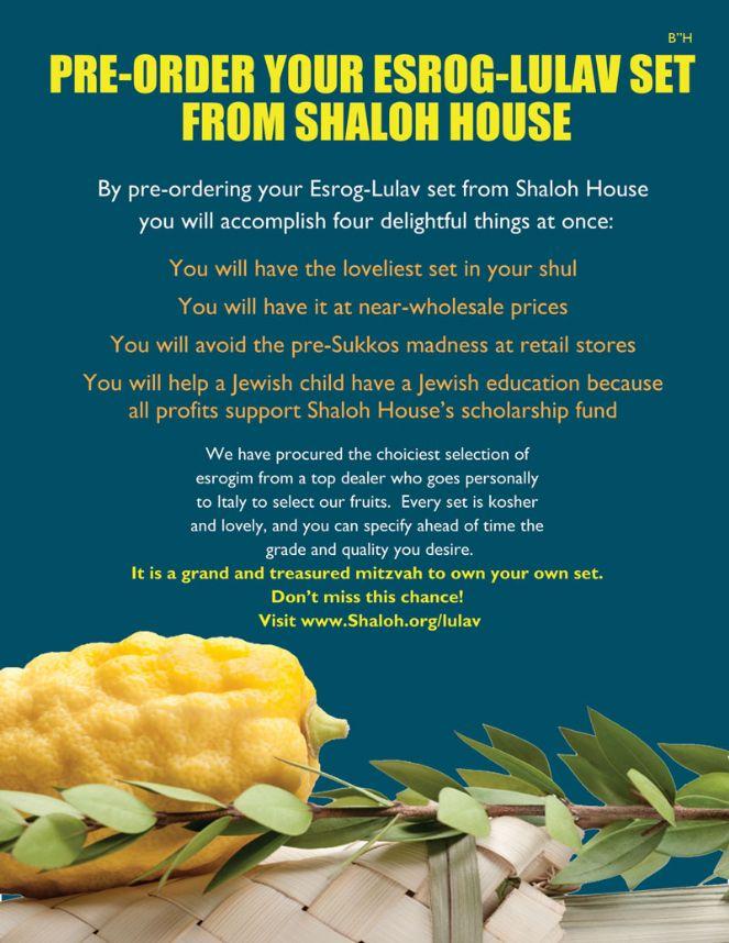 Buy-Lulav-from-Shaloh-House.jpg