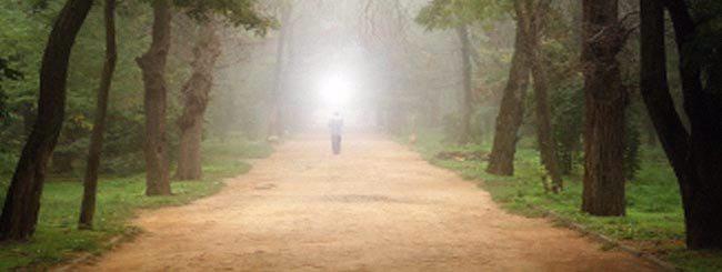 Artigos: O Caminho para a Verdadeira Transformação