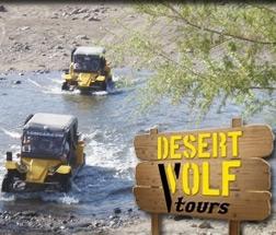 Desert_Wolf.jpg