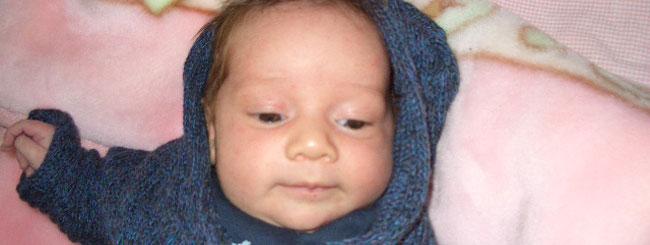 Bebés de Plegaria