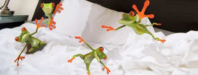 Weekly Torah Reading - Chasidic Masters: Like Frogs Jumping into Dough