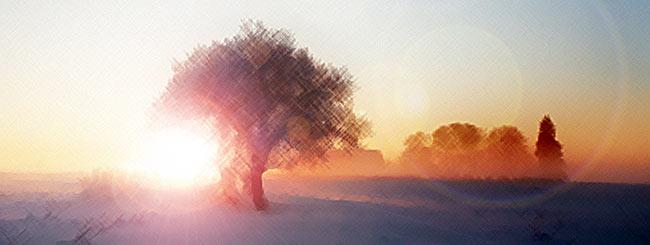 Jüdische Feiertage: Der wahre Genuss