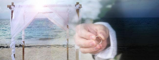 המדריך המושלם לחתונה היהודית