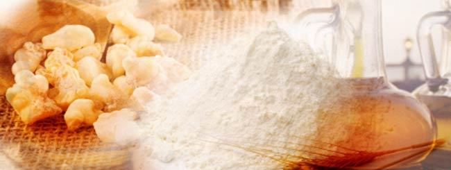 Paracha (Torah hebdomadaire): Vayikra - en bref