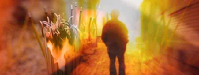 Der Wochenabschnitt: Acharej in Kürze