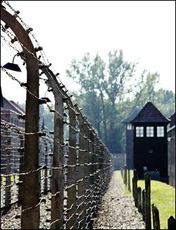 Auschwitz (Photo: Damian Searles)