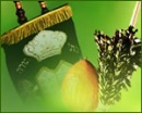 Sukkot/Simchat Torah super site!