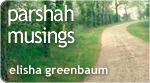 Parshah Musings