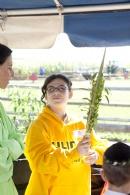 Sukkot on the Farm