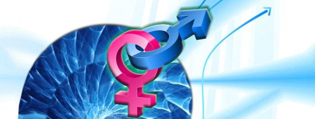 Chasidic Masters: Female and Male Souls