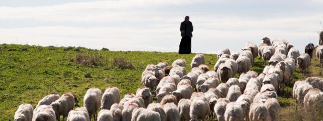Les maîtres 'hassidiques: Moïse: la naissance d'un leader