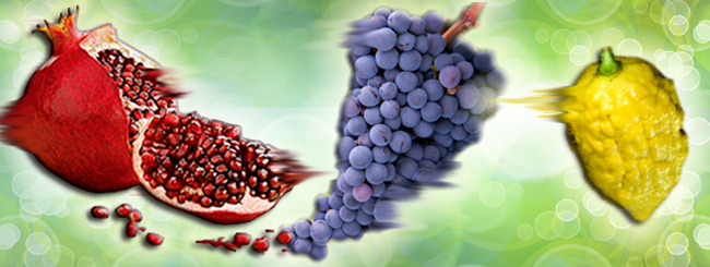Mystical Classics: Sweet Dreams of Fruit