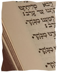 A Woman's Prayer - Celebrating Jewish Womanhood