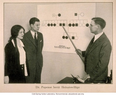 """German photo of Paul Popenoe showing a couple a pedigree of """"Black People of Artistic Ability."""""""