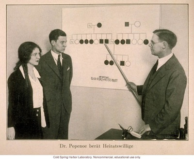 "German photo of Paul Popenoe showing a couple a pedigree of ""Black People of Artistic Ability."""