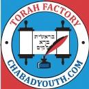 TorahFactory_Chabad_Youth -web.jpg