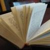 Introducción del Libro de Tania