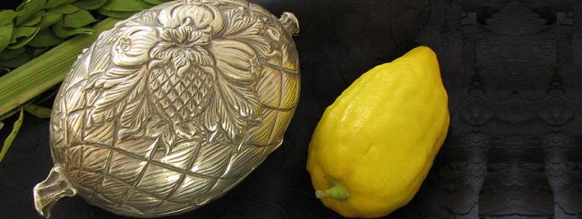 Story: The Case of the Missing Etrog