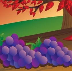 The Fox in the Vineyard - Jewish Stories
