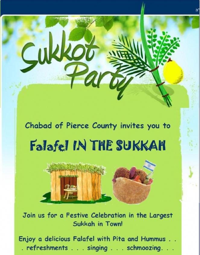 falafle in the sukkag web #1.jpg