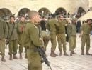 The Land of Israel and its Pursuit of Peace: The Halachic Perspective