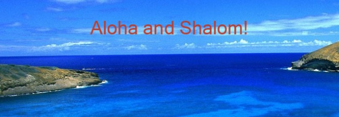 Aloha and Shalom banner