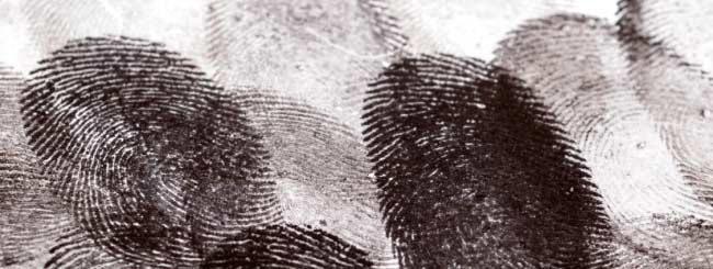 Mensagem da Parashá: A Identidade de Yitró