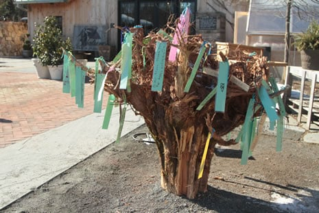 Tree Stump, String, Paper