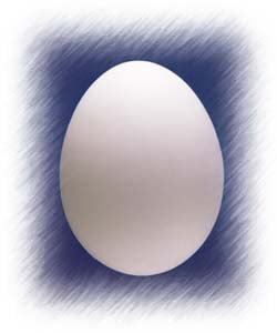 The Egg in Exodus - Passover
