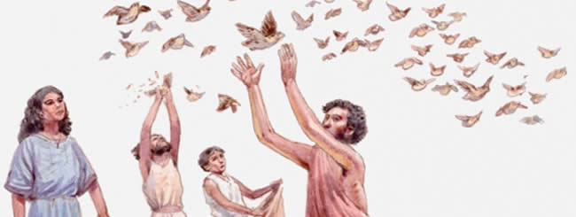 Каббала и хасидизм: Ни рыба ни мясо