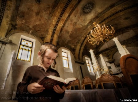 A young student at prayer at the Obuda Synagogue in Budapest (Photo: Clifford Lester).