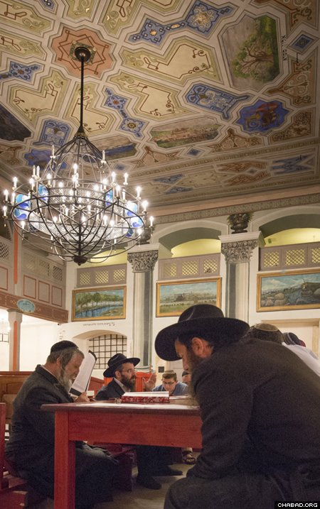 At study in the Kupa Synagogue in Krakow (Photo: Clifford Lester)